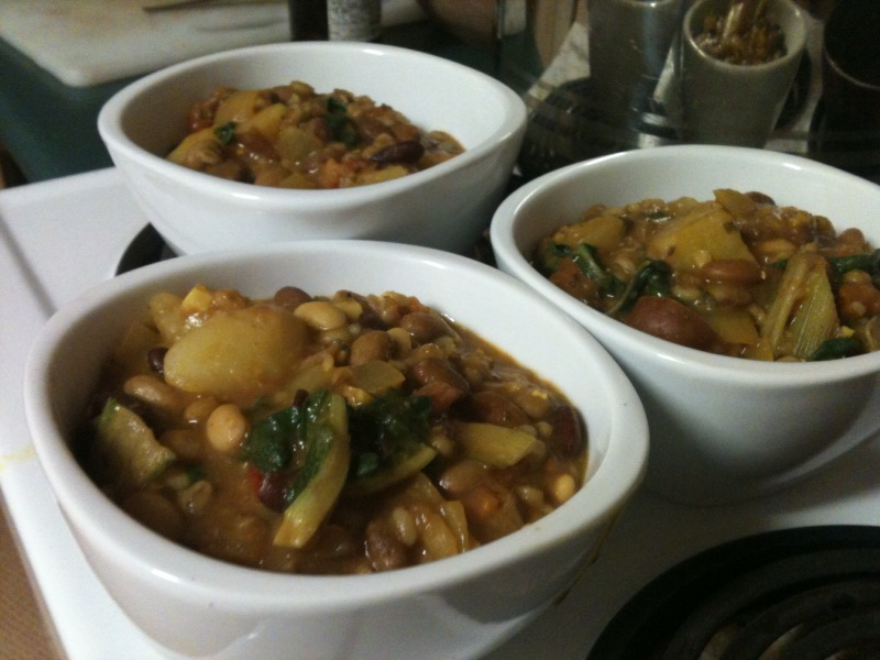 Em's Hearty Healthy Stew